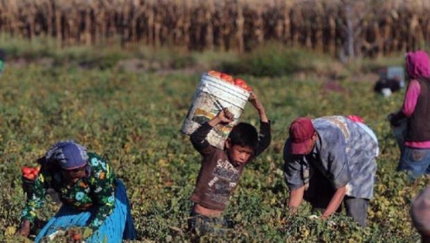 noticias nacional 266 mil personas en esclavitud en mexico