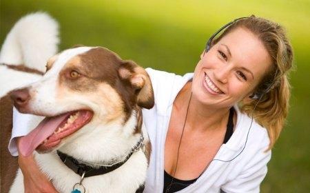 perro-independencia-responsabilidad