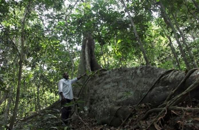 Uganda Zika Forest_Gonz(2)