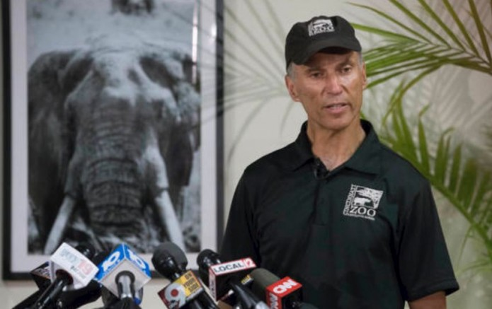 La muerte de Harambe causó indignación en redes sociales. El zoológico se defendió.