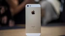 Apple empezará a fabricar el iPhone SE en India en los próximos meses