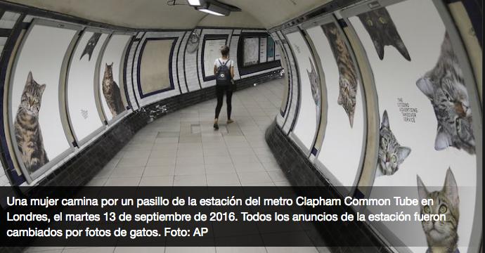 Gatos en el metro londinense- Gregorio Martínez.